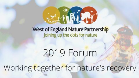 WENP 2019 Forum: Working together for nature's recovery